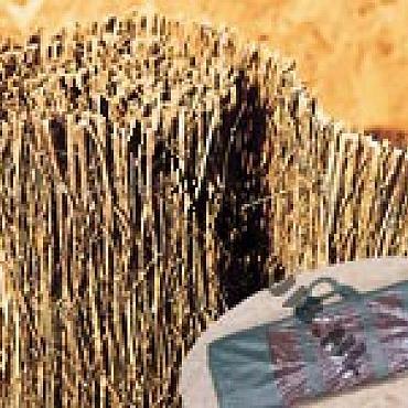 Bamboepluimmat panicule 100x300 cm