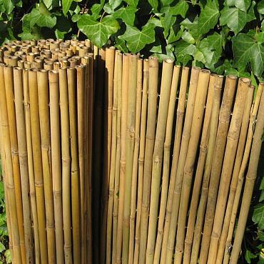 Bamboescherm Dalian 200x180 cm